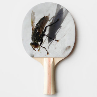 Paleta del ping-pong de la MOSCA Pala De Ping Pong