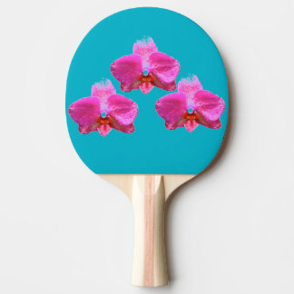Paleta del ping-pong - orquídea pala de ping pong
