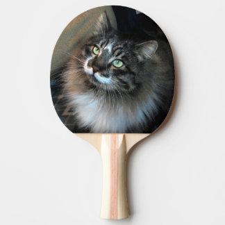Paleta irresistible del ping-pong de Zorro del Pala De Ping Pong