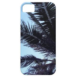 Palm tree funda para iPhone SE/5/5s