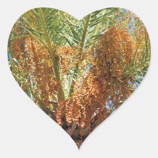 Palma datilera pegatina en forma de corazón