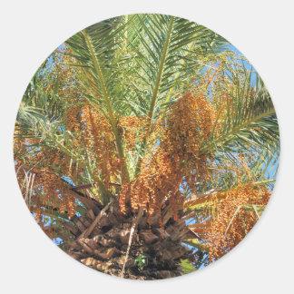 Palma datilera pegatina redonda