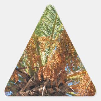 Palma datilera pegatina triangular