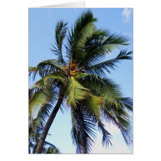 Palma de coco tarjeta de felicitación