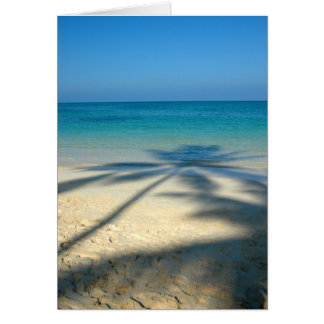Palma, playa de Lanikai Tarjeta