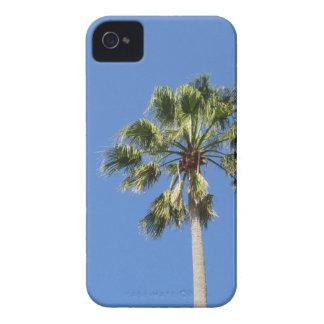Palmera en cielo azul Case-Mate iPhone 4 protector