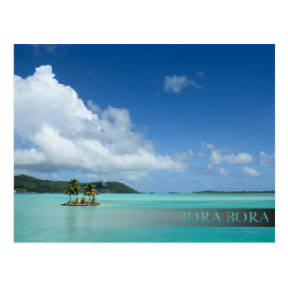 Palmera en postal de la barra de la laguna de Bora
