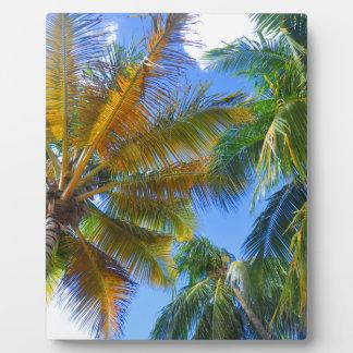 Placas fotograbadas hojas tropicales - Palmeras de plastico ...