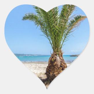 Palmera tropical en la playa arenosa pegatina en forma de corazón