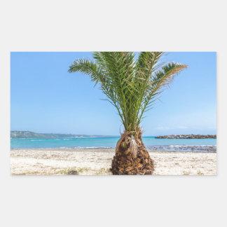 Palmera tropical en la playa arenosa pegatina rectangular