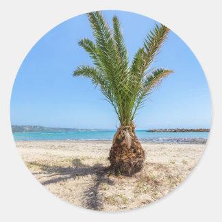 Palmera tropical en la playa arenosa pegatina redonda