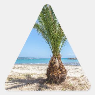 Palmera tropical en la playa arenosa pegatina triangular