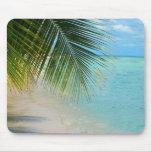Palmera y océano tropicales en la playa tapete de ratones