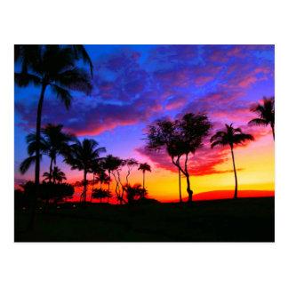 Palmeras hawaianas exóticas de la playa de la postal