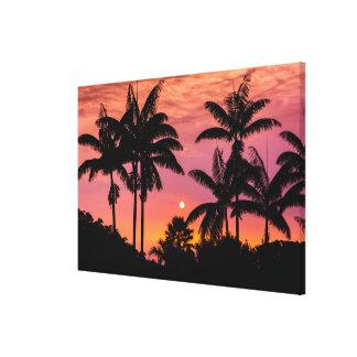 Palmeras silueteadas, Hawaii Lienzo