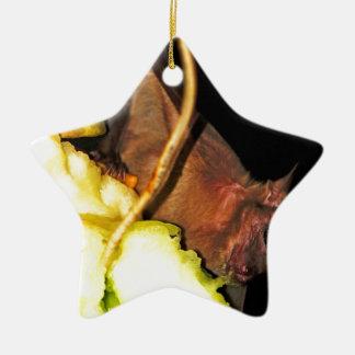 Palo de fruta 1 adorno de cerámica en forma de estrella