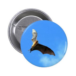 Palo de fruta del zorro de vuelo en el cielo Sri L Chapa Redonda De 5 Cm