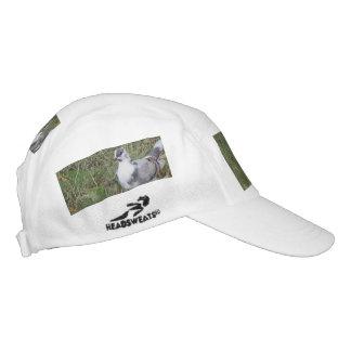 Paloma con base bonita de la pluma de lujo blanca gorra de alto rendimiento