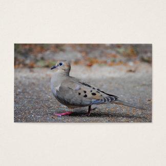 Paloma de luto que toma un paseo tarjeta de negocios