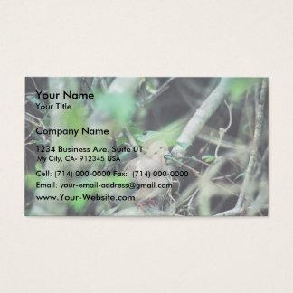 Paloma de luto tarjeta de negocios