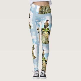 Paloma encima de las polainas de las mujeres del leggings