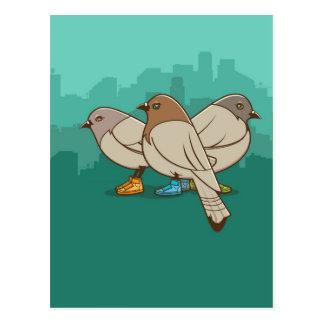 Palomas con diseño gráfico de la foto divertida de tarjetas postales