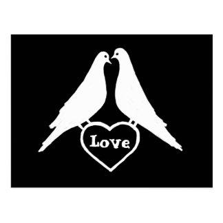 Palomas del amor postal