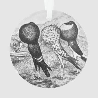Palomas del Pouter de Brunner Adorno