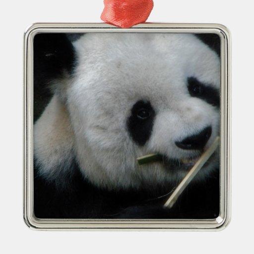 Panda Ornamentos De Reyes