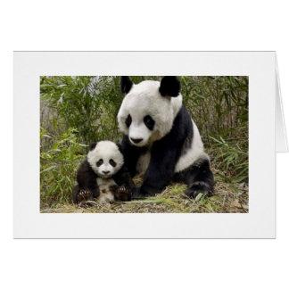 Panda de la madre con su Cub Tarjeta De Felicitación