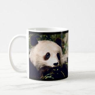 PANDA dulce personalizada de la taza QUE MASCA EN