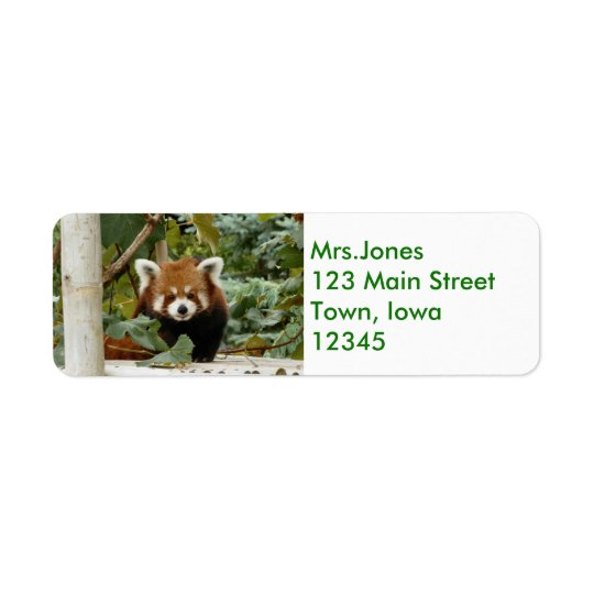Panda roja etiqueta de remite