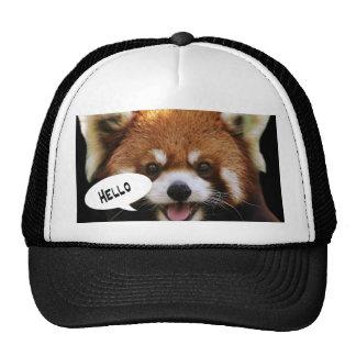 Panda roja gorro