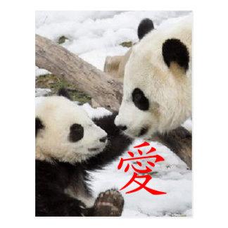 Pandas chinas del amor postal