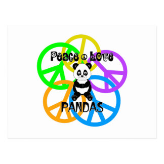 Pandas del amor de la paz postal