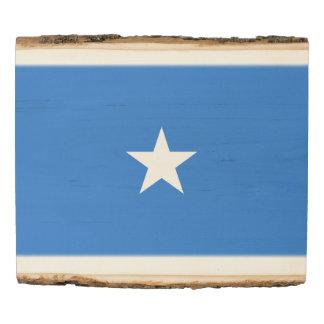 Panel De Madera Bandera de Somalia