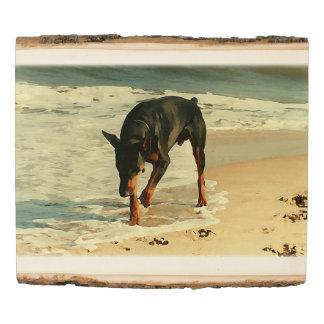 Panel De Madera Doberman en la imagen de la pintura de la playa