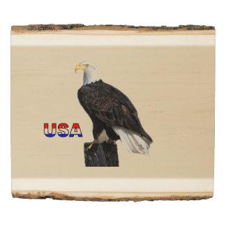 Panel De Madera Eagles calvo americano