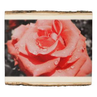 Panel De Madera Flores color de rosa románticas