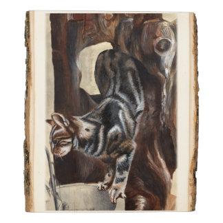 Panel De Madera gato de tabby en soporte de madera rústico de la