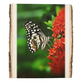 Panel De Madera Mariposa en las flores #2