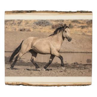 Panel De Madera Mustango salvaje