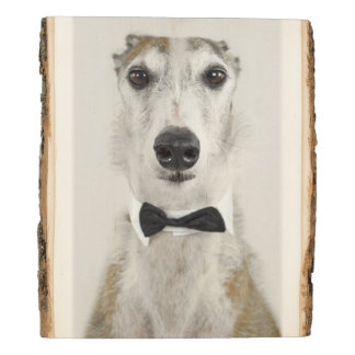 Panel De Madera Perro gris vestido para arriba