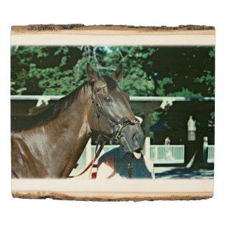 Panel De Madera Renuncie el caballo de carreras 1977