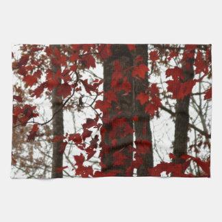 Paño De Cocina La caída colorea las hojas de arce del canadiense