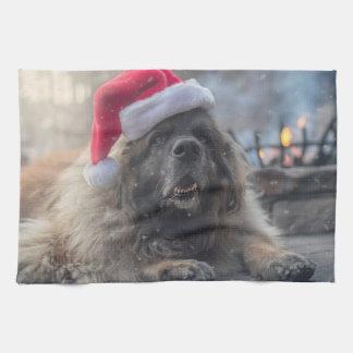 Paño De Cocina Leonberger Santa