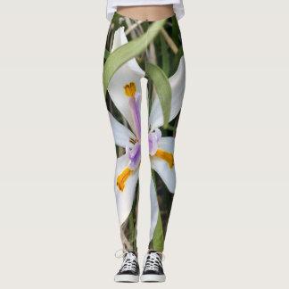 Pantalones de la yoga de la flor de la Florida