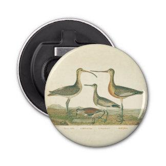 Pantano antiguo Coastal de la impresión del pájaro Abrebotellas Redondo