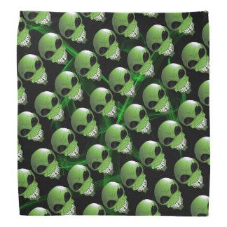 Pañuelo extranjero verde