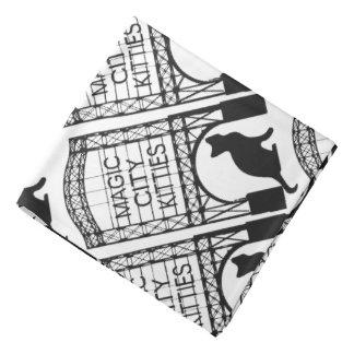 Pañuelo mágico de los gatitos de la ciudad bandana